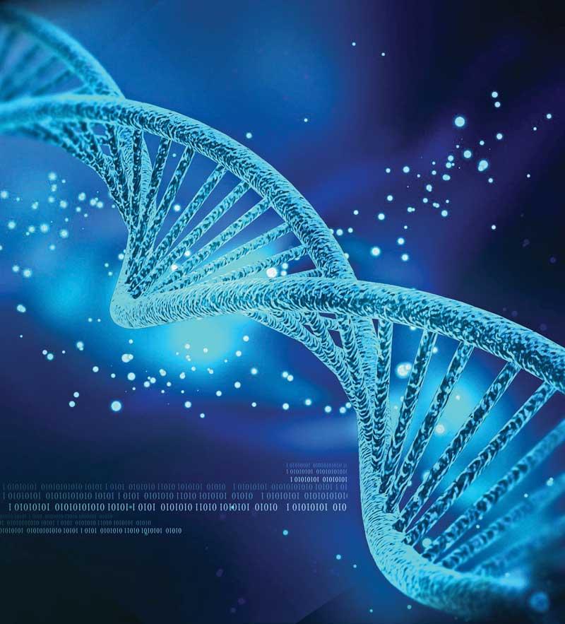 """Agefi – """"Genomsys à l'origine d'un standard de compression des données génomiques"""""""